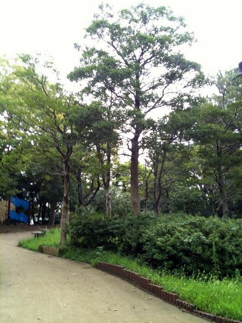 等々力緑地公園