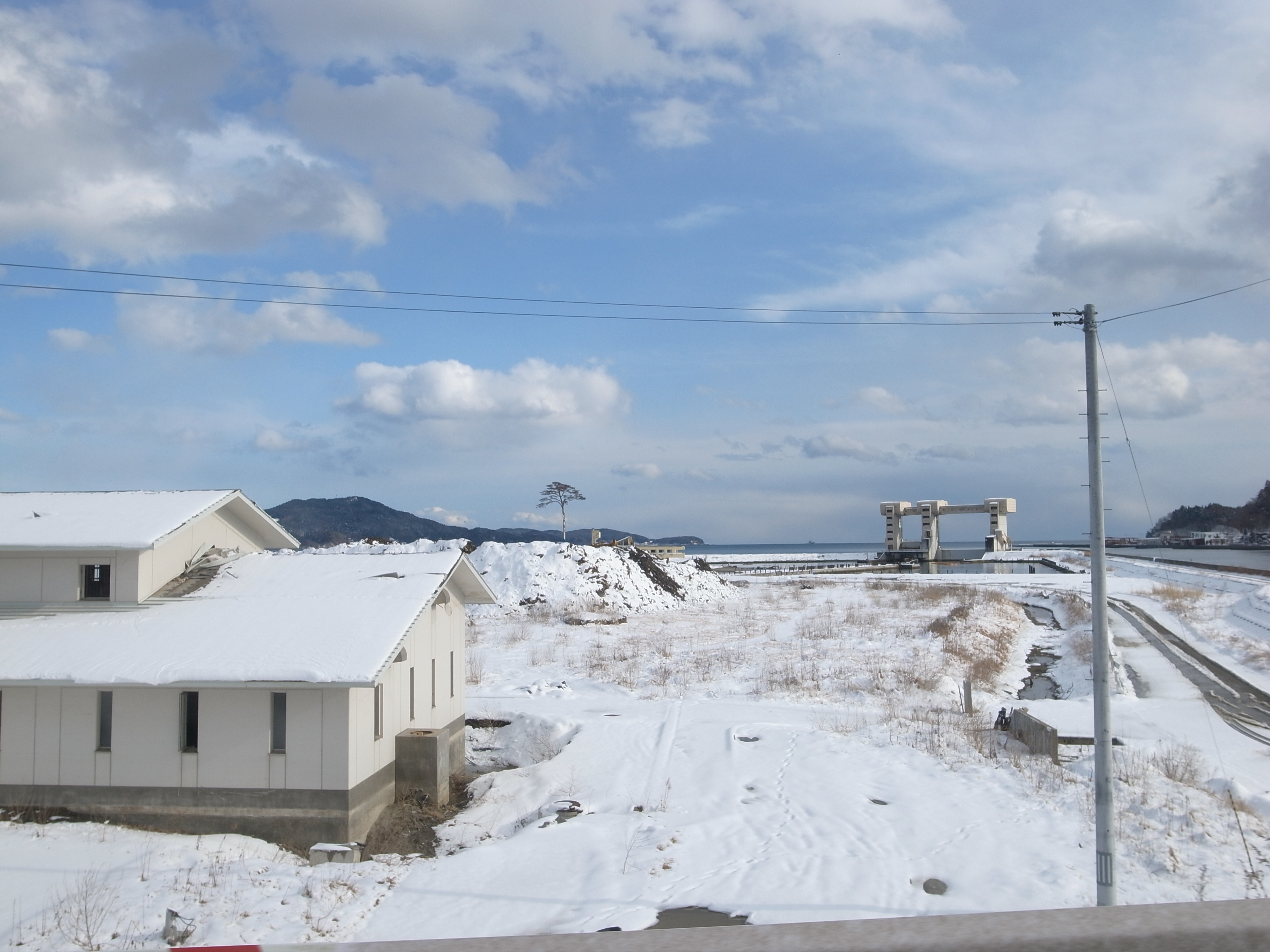 陸前高田 千本松原